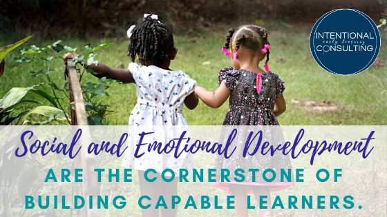 Social and emotional development are the cornerstone of building capable learners